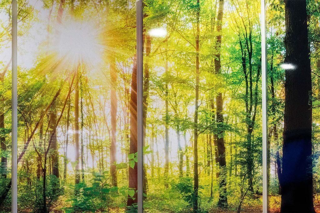Mural-bosque-sublimado-detalle